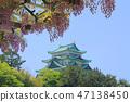 나고야 성 및 등나무 47138450