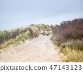 Dune landscape on the island Helgoland 47143123