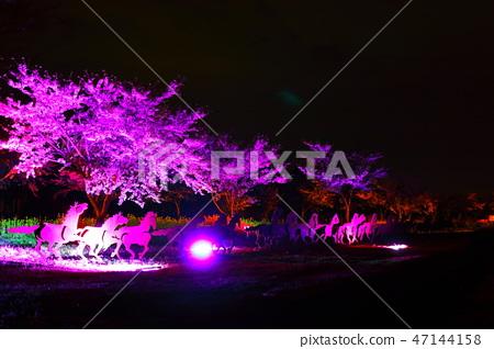 녹산로,벚꽃,유채꽃,도로, 47144158