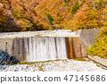 【야마나시 현] 니시자와 계곡 47145686