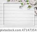 branch floral vector 47147354