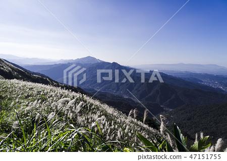 九份不厭亭上眺望芒草盛開的層疊山巒 47151755