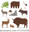Animal vector animalistic character in forest bear deer elk of Europe wildlife illustration set of 47153248
