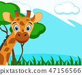 Giraffe looks out on a nature background. 47156566