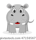 Hippo smiling on a white. The character of wild 47156567