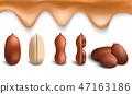 Peanut icon set, realistic style 47163186