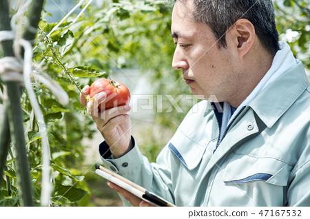 男性聰明的農業房子耕種 47167532
