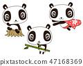 Cute panda living, bamboo, stump, superman 47168369