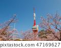 Cherry blossom around the Radio Antenna 47169627
