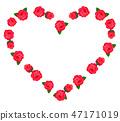 장미, 장미꽃, 로즈 47171019