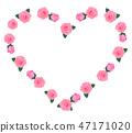 장미, 장미꽃, 로즈 47171020