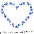 장미, 장미꽃, 로즈 47171021