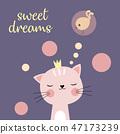 sweet dreams cat 47173239