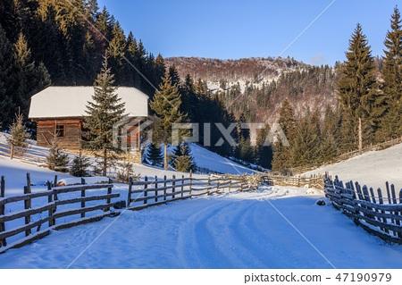 traditional house in Fundatica village, Romania 47190979