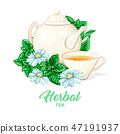 Porcelain Teapot and Tea cup with Mint Tea and Leaves. Isolated and Detailed. 47191937