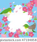 Sakura Tomejiro Frame 47194858