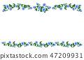 玫瑰 玫瑰花 框架 47209931