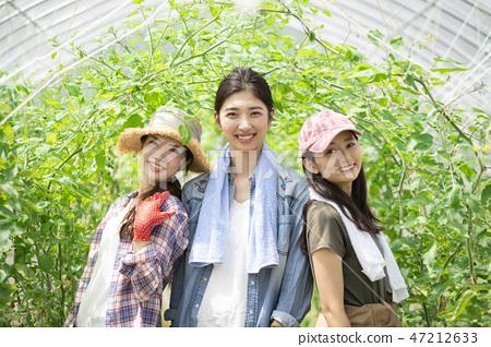 여성 농업 인물 47212633