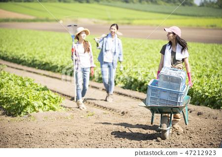 여성 농업 동료 47212923