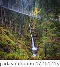 suspended bridge on alps 47214245