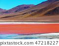 Laguna Colorado 47218227