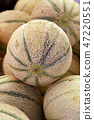 Close up fresh cantaloupe melons on retail display 47220551