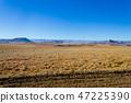 Orange Free State panorama, South Africa 47225390