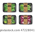 Salad leaves with plastic tray container with cellophane cover. Retro design set. Mockup template 47228041