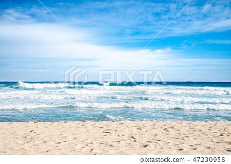 바다, 파도, 바람, 해변 47230958