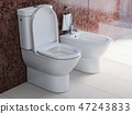 Toilet bowl and bidet in the modern bathroom. 47243833