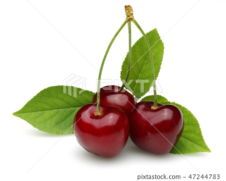 Ripe red cherry with leaves 47244783