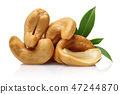 Roasted cashew nuts with green leaves 47244870