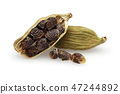 Dry cardamom pods and seeds 47244892