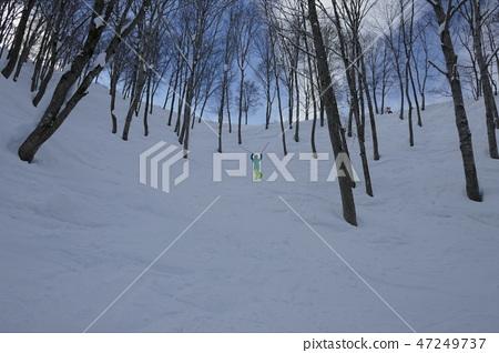 Forest course (powder wave 2) of Murao Kogen ski resort 47249737