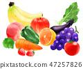 야채 과일 47257826