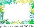 식물의 프레임 47265994