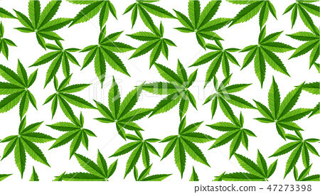 Marijuana Leaves Seamless Vector Pattern Stock Illustration 47273398 Pixta