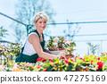 Attractive gardener selecting flowers in a gardening center. 47275169