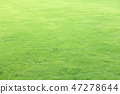 Green field at the public park 47278644