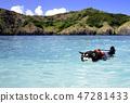 海洋和黑色的灌木叢 47281433