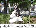 黑清波 柴犬 叢林犬 47282295