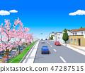 櫻花鎮住宅區櫻花樹 47287515