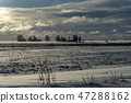 Cold bleak snowy winter landscape 47288162