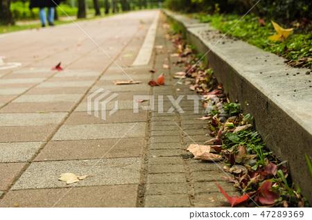公園般的風景路,自然景觀 47289369