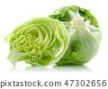 Green iceberg lettuce on white background 47302656