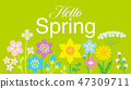 Hello Spring with Yellow flower letters in Spring yellow green background 47309711