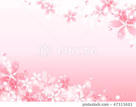 櫻花背景 47313681