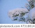 Spruce branch under the snow with drops of snow on the needles. Night blurred background 47318614
