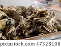 กระท่อมหอยนางรม 47328108