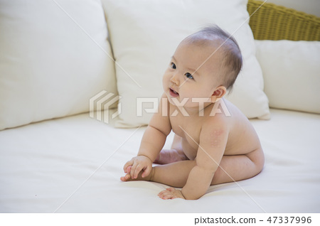 Little two cute babies photo. Baby wearing diaper in white bedroom. 018 47337996